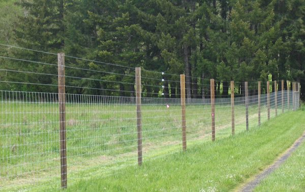 stock fencing and wire netting