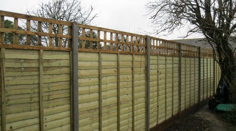 Fence panels with trellis top