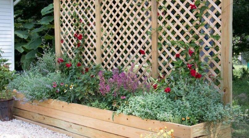 Trellis and planter in garden