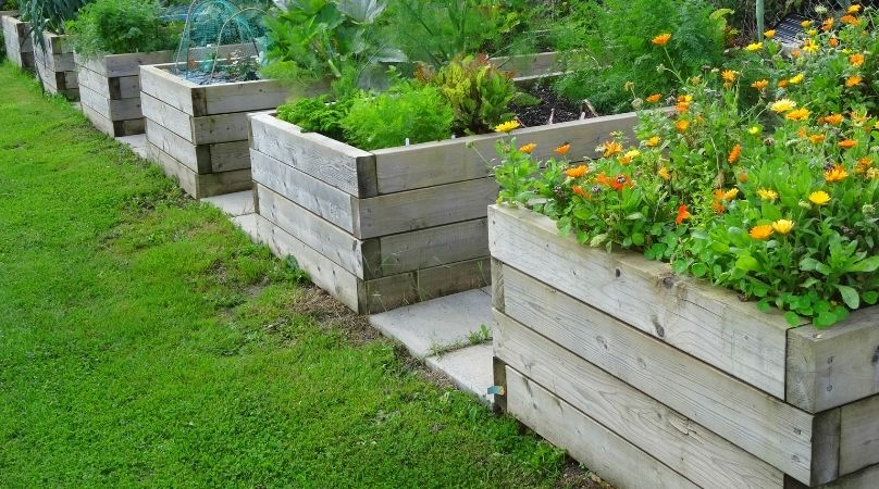 raised beds made from sleepers